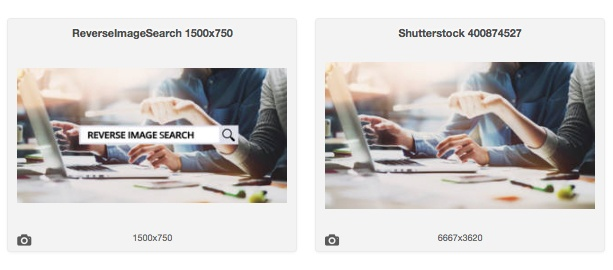 Reverse Image Search Versions