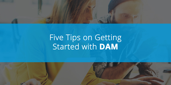 Getting started with DAM