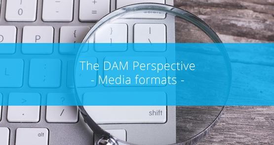 White Paper - Media Formats