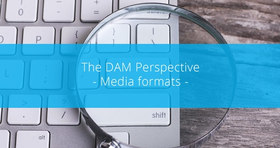 The DAM Perspective - Media Formats