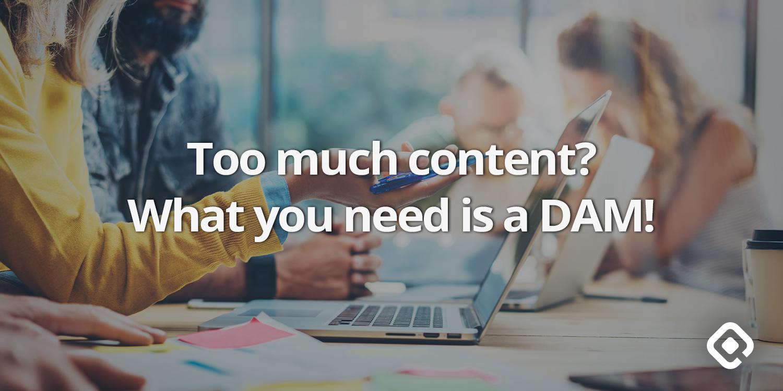 QBank DAM for content